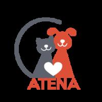 Logo-Atena-Def