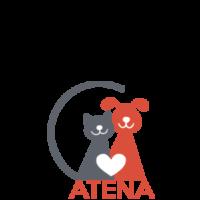 Logo-Atena